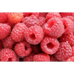 Raspberry - Aroma